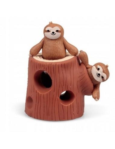 Rozciągliwe leniwce w pniu drzewa...